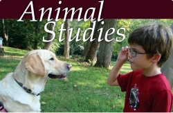 Animal Studies Program